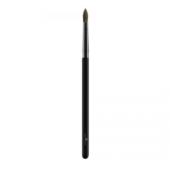 precise-lip-brush